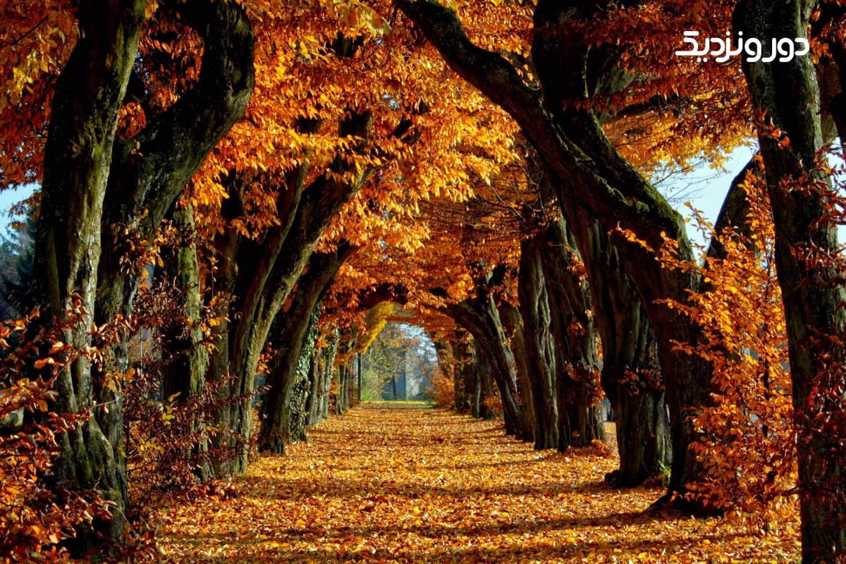 بهترین سفرهای پاییزی...